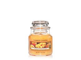 Mango Peach salsa sviečka
