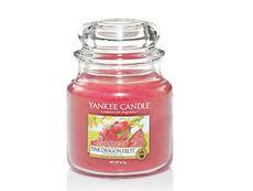 Pink dragon fruit sviečka