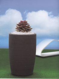 Kvetináč ORCHIDEA